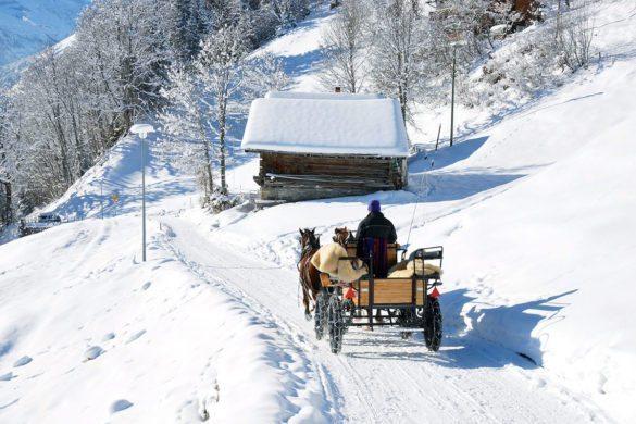 Pferdeschlittenfahrten im Winter- & Skiurlaub in Obertauern, Salzburg